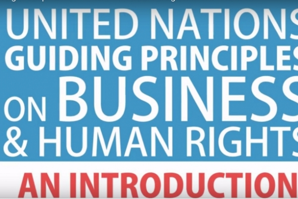 Explainer video on UN Guiding Principles on Business and Human Rights