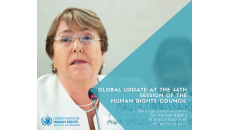 Global update by UN high commissioner for human rights at the human rights council