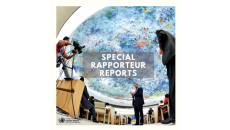 Special Rapporteur's reports 2019