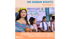 Assessment of the Credit Opportunities for Indigenous Communities in Cambodia Holding a Collective Land Title