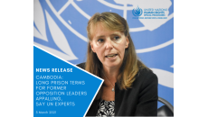 Long prison terms for former opposition leaders appalling, say UN experts